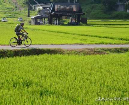 Cycling Japan 騎車旅行日本山梨長野新瀉