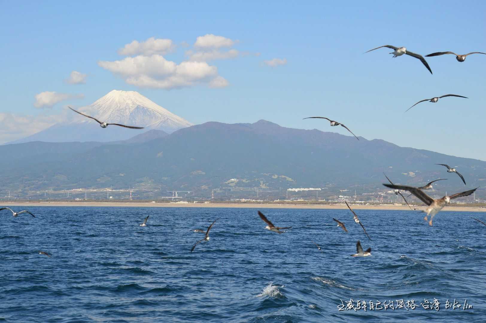 日本靜岡Cycling的決心