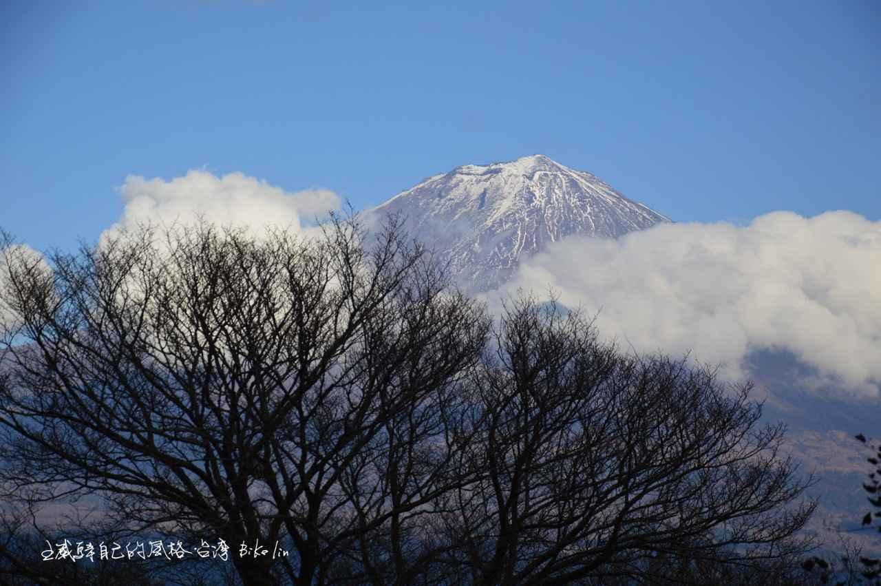Cycling Japan Shizuoka