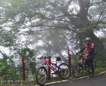 虛無飄渺司馬限林道、騎車騰雲駕霧盡在此