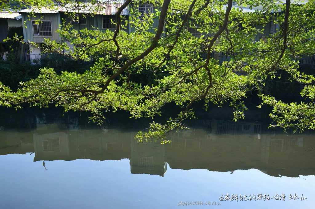 竹東軟埤溪與旅人相同舒緩心境