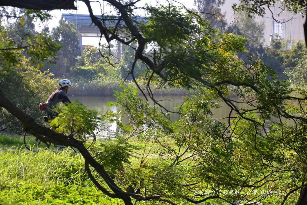 竹南濕地晨間舒服顏色