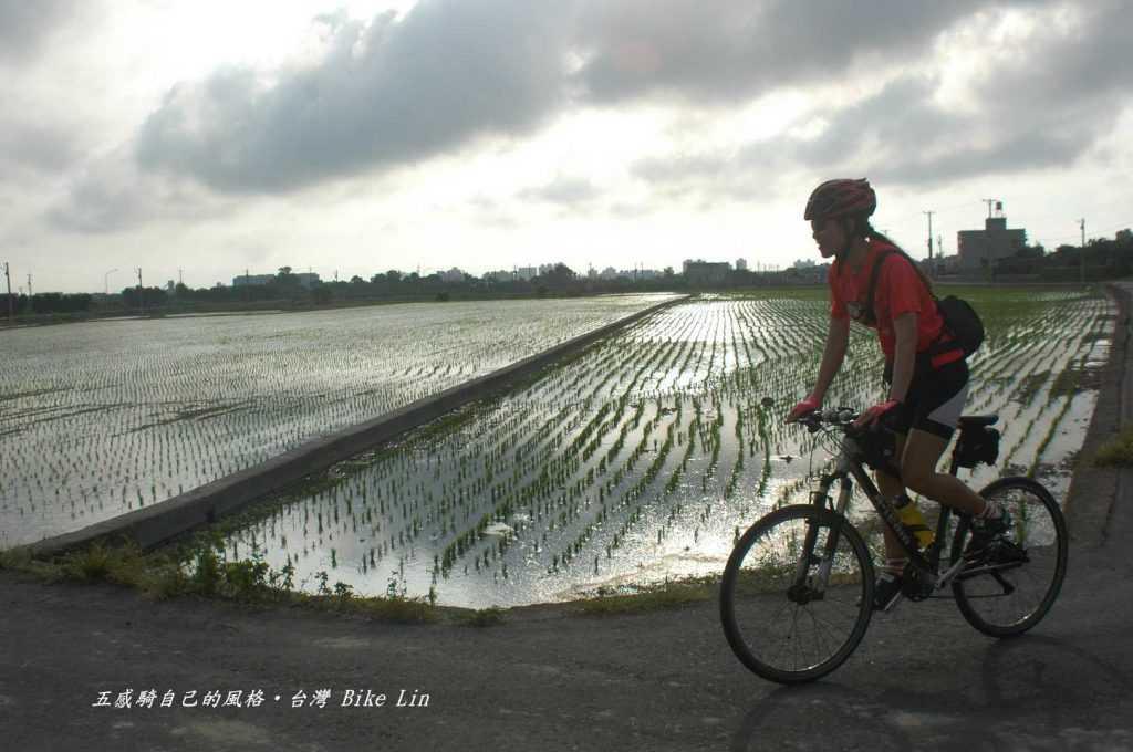 完全不同於「17公里海岸自行車道」風情