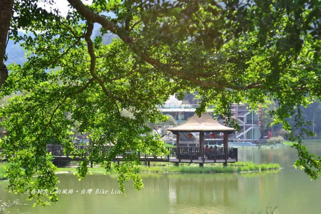 鯉魚潭/柳堤