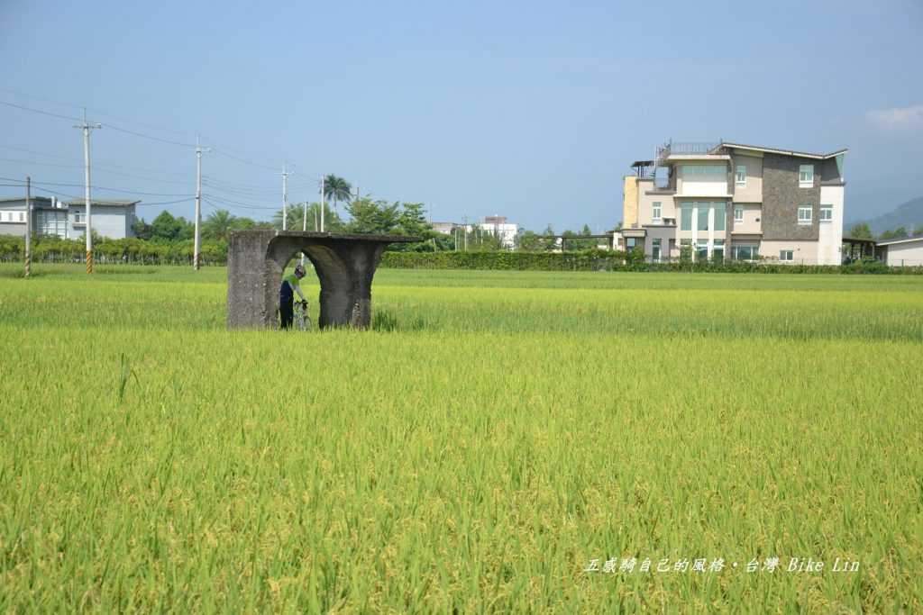 有稻田的「五分車路吃水站」