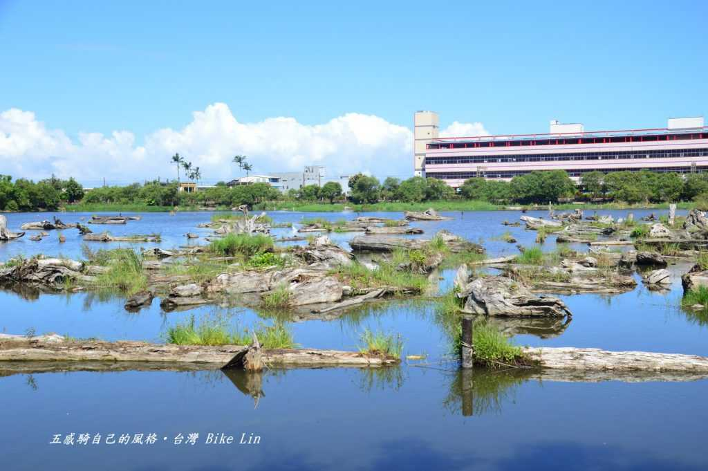 松羅埤儲木池