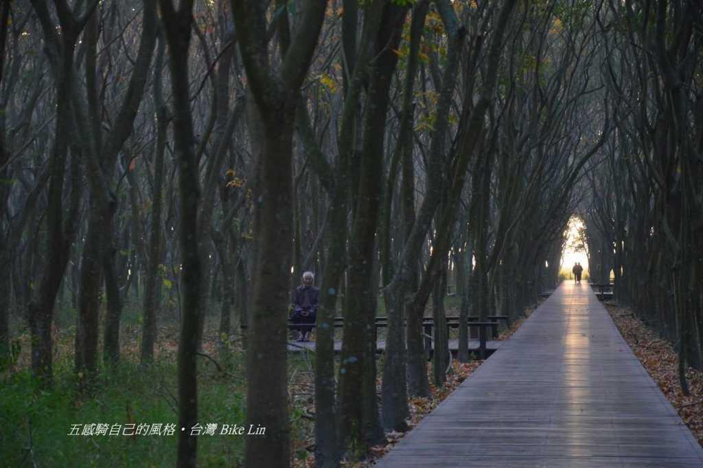 溪州公園有著更深邃龍貓公園意象