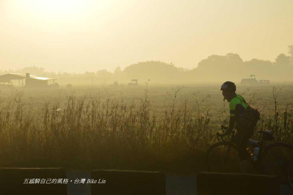 溪州公園清晨灑落金黃農野景象