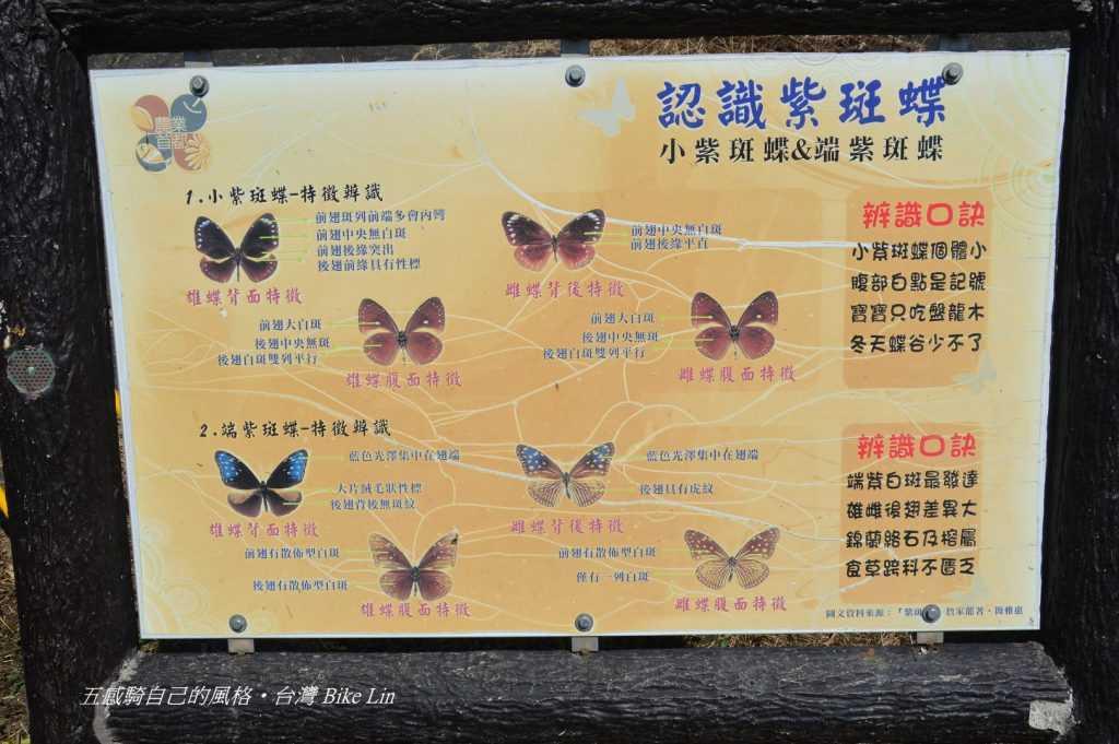 台灣蝴蝶通道