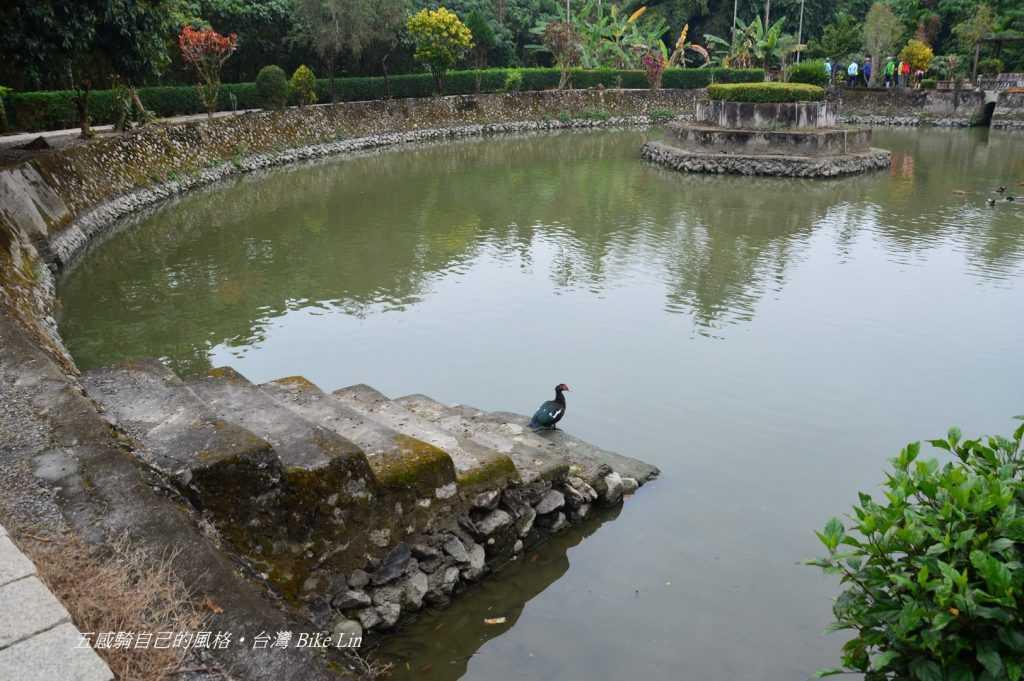 五溝水半月池
