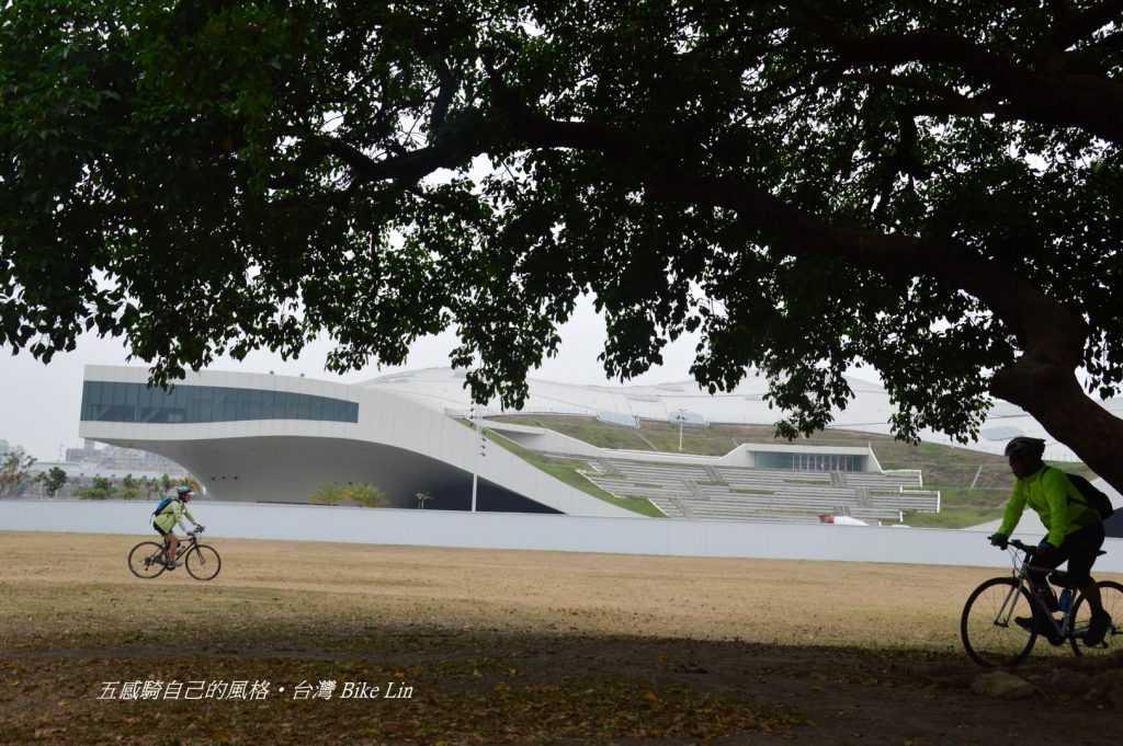 老樹下瞇著眼增添宏偉藝術中心綠意