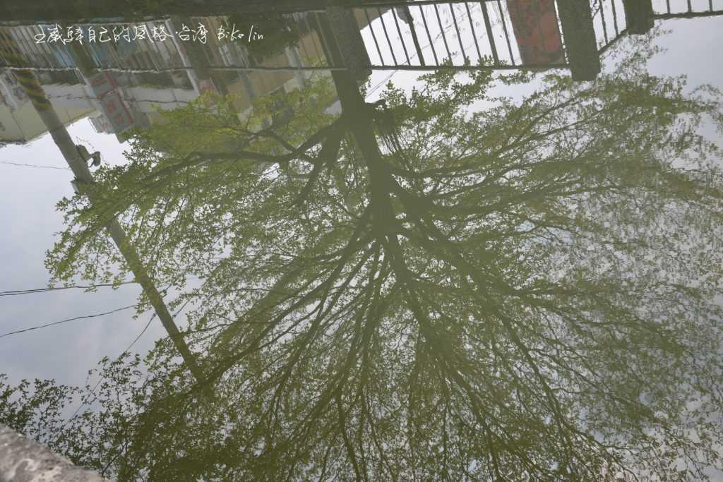 東港春天綠