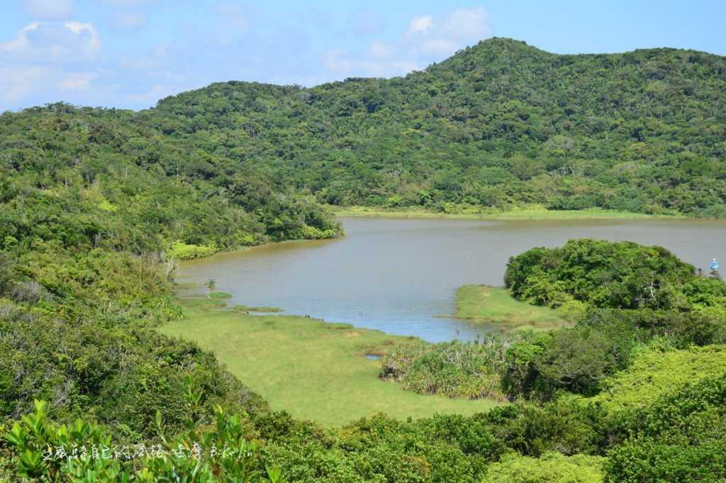 低海拔原始天然熱帶季風雨林