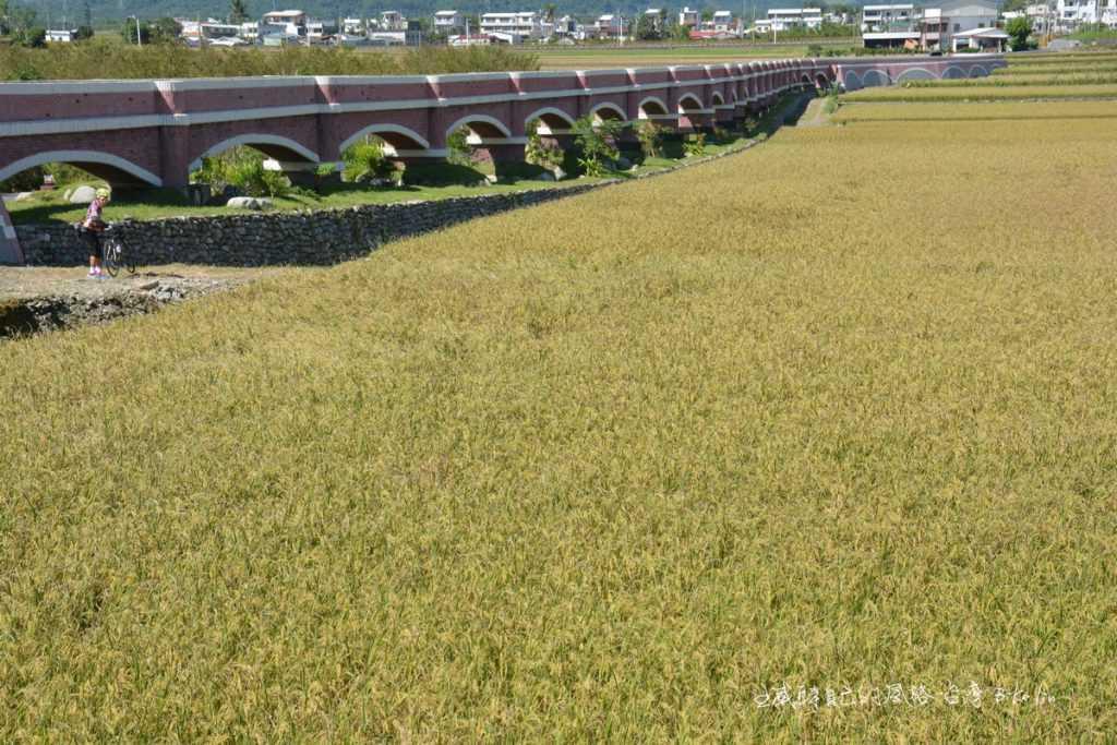 「二層坪水橋」金黃綠野