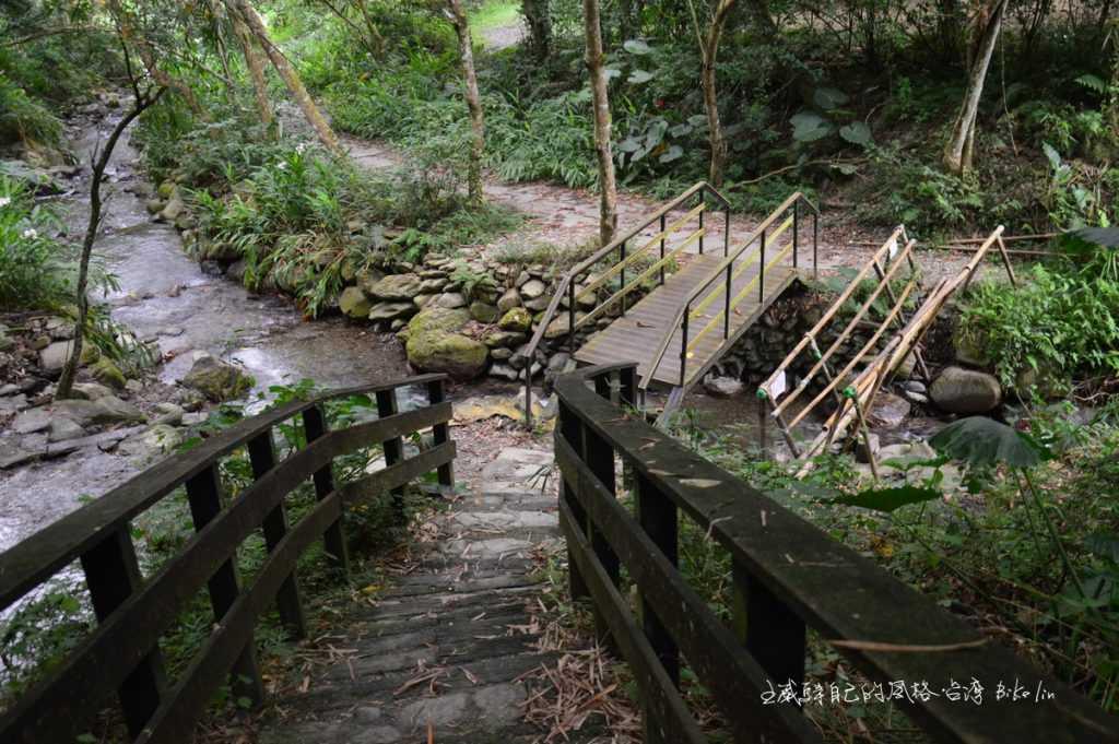玉龍泉茶園生態步道